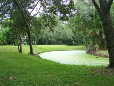 Lakeview Park, Main course, Hole 6 Tee pad
