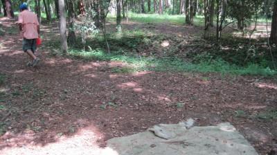Jack McLean Park, Main course, Hole 10 Short tee pad