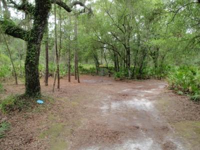 USF Riverfront Park, Main course, Hole 11 Putt