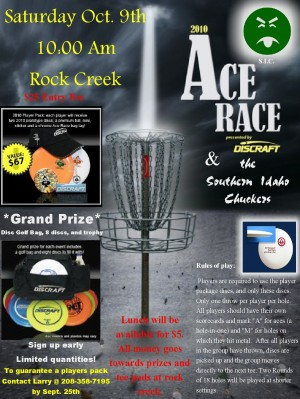 2010 Ace Race graphic