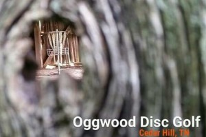 4th Annual AllGood at OggWood Driven by INNOVA graphic