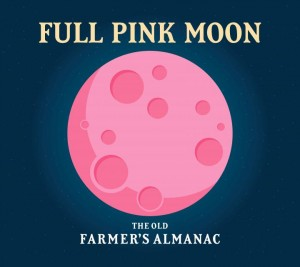 The Full Pink Moon Glow Night graphic