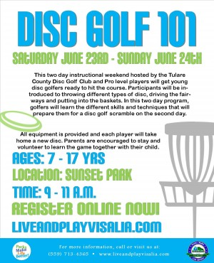 Disc Golf 101 graphic