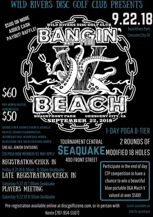 Bangin' at the Beach V graphic