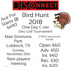 DISConnect Bird Hunt 2018 graphic