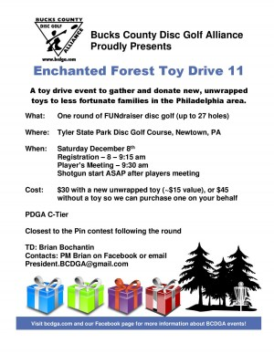 Enchanted Forest Toy Drive 11 graphic