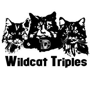 Wildcat Triples Weekend - Adv/Rec graphic