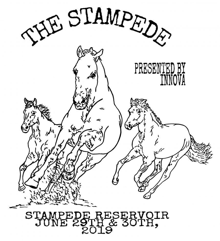 The Stampede Presented By Innova (2019, Sierra Tahoe Series) · Disc