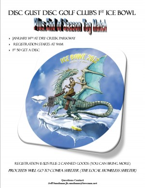 Disc Gust Disc Golf Club's 1st Ice Bowl graphic