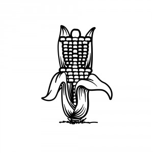 Tecumseh Corn Festival Open 2019 - Sunday Flex-Start graphic
