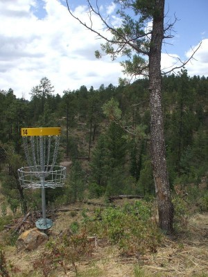 31st New Mexico State Disc Golf Championships graphic