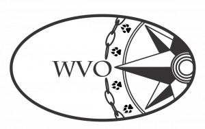 West Virginia Open Driven by Innova graphic