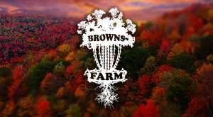 Fall Colors 2020 Powered By PRODIGY graphic