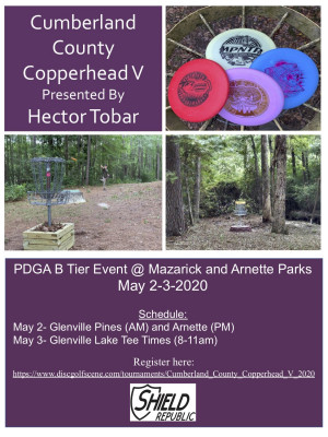 Cumberland County Copperhead V Presented By Hector Tobar graphic