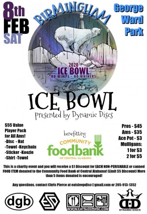 Birmingham Ice Bowl presented by Dynamic Discs graphic