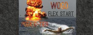 WOGD Flex Start graphic