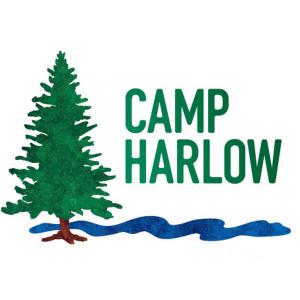 Camp Harlow Fall Fling graphic