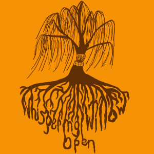 Whispering Willow Open II presented by Caddie Disc Golf & The Disc Golf Experience graphic