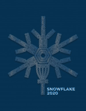 The 2020 Snowflake graphic