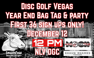 DGV Year End Bag Tag graphic