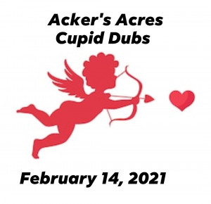 Cupid dubs graphic