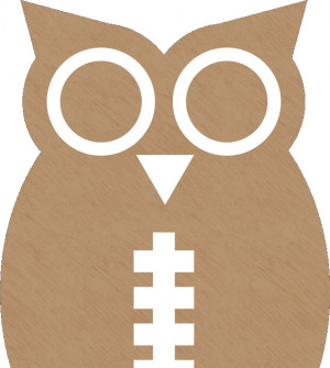 The Superb Owl at Lake Fenwick graphic