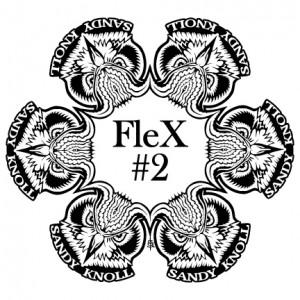 Sandy Knoll FleX #2 PDGA C Tier 27 Holes graphic