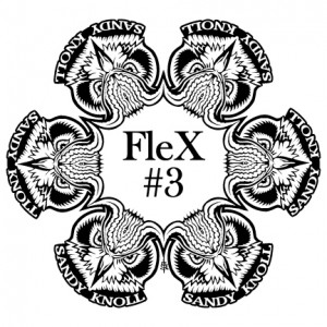 Sandy Knoll FleX #3 PDGA C Tier graphic