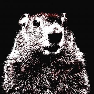 Woodchuck Chuck 2021 - Pros graphic