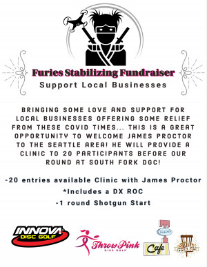 Furies Stabilizing Fundraiser graphic