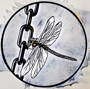 WGE- Dragonfly Dash graphic