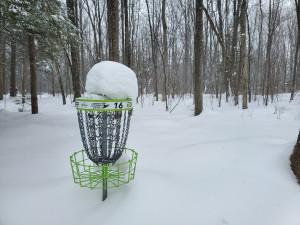Ontario Provincial Disc Golf Championship graphic