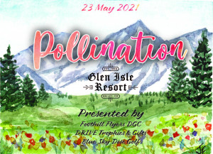 The Pollination graphic