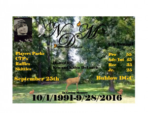 The Nick DeLoach Memorial:  sponsored by Dynamic Discs graphic