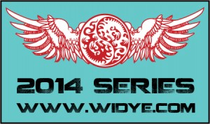 2nd Annual Widye 2014 Series Finale PDGA B Tier graphic