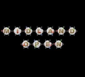 Discraft presents Midland Open Day 2 (MPO FPO MPG MA2 MA4 FA1 FA2 MM1) graphic