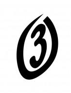 Circle 3 Disc Golf logo