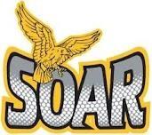 Team Soar (Geese) logo
