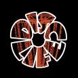 Disc Life logo