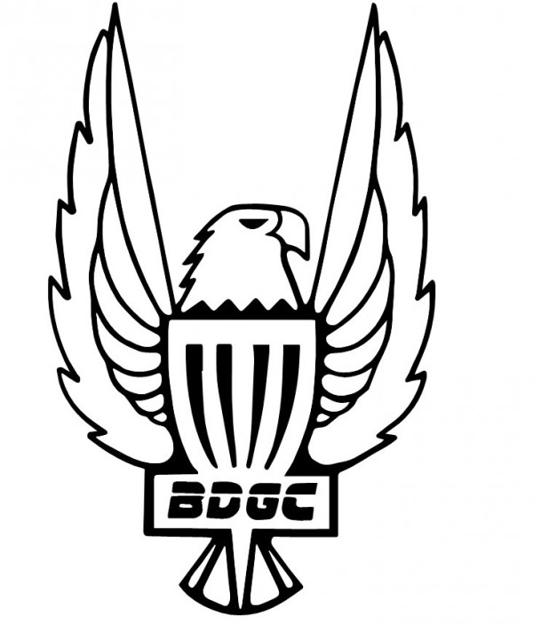 Bulloch Disc Golf Club logo