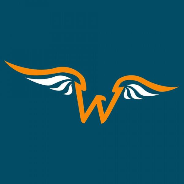 Eagles Wings Disc Golf logo