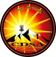 CDSA - Colorado Disc Sports Association logo