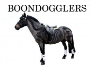 Boondogglers Fandango logo
