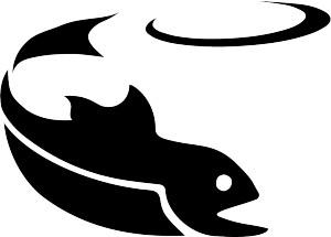 Salmon Falls DGC logo