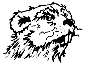 Crazy Beaver Disc Golf Alliance logo
