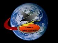 Tampa Disc Slingers logo