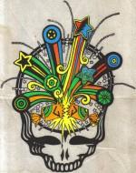 PollockPinesDiscgolfers logo