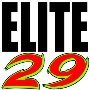 Elite29 logo