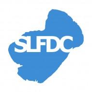 Silver Lake Flying Disc Club logo