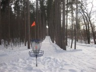Blue Ribbon Pines disc golf club logo
